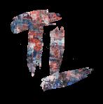 Logo TL multicolour